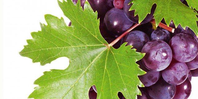 Benessere con l'uva