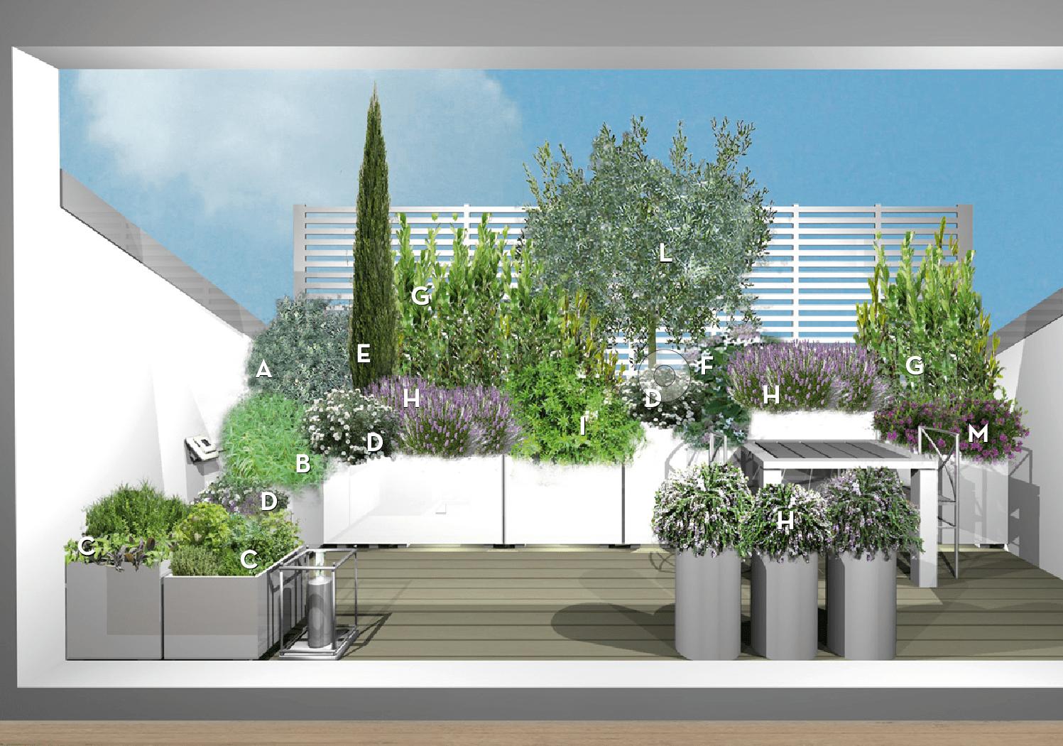 Progetto verde per il terrazzo nel tetto: un angolo mediterraneo in ...