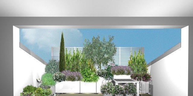 Progetto verde per il terrazzo nel tetto: un angolo mediterraneo in città sul terrazzo a tasca