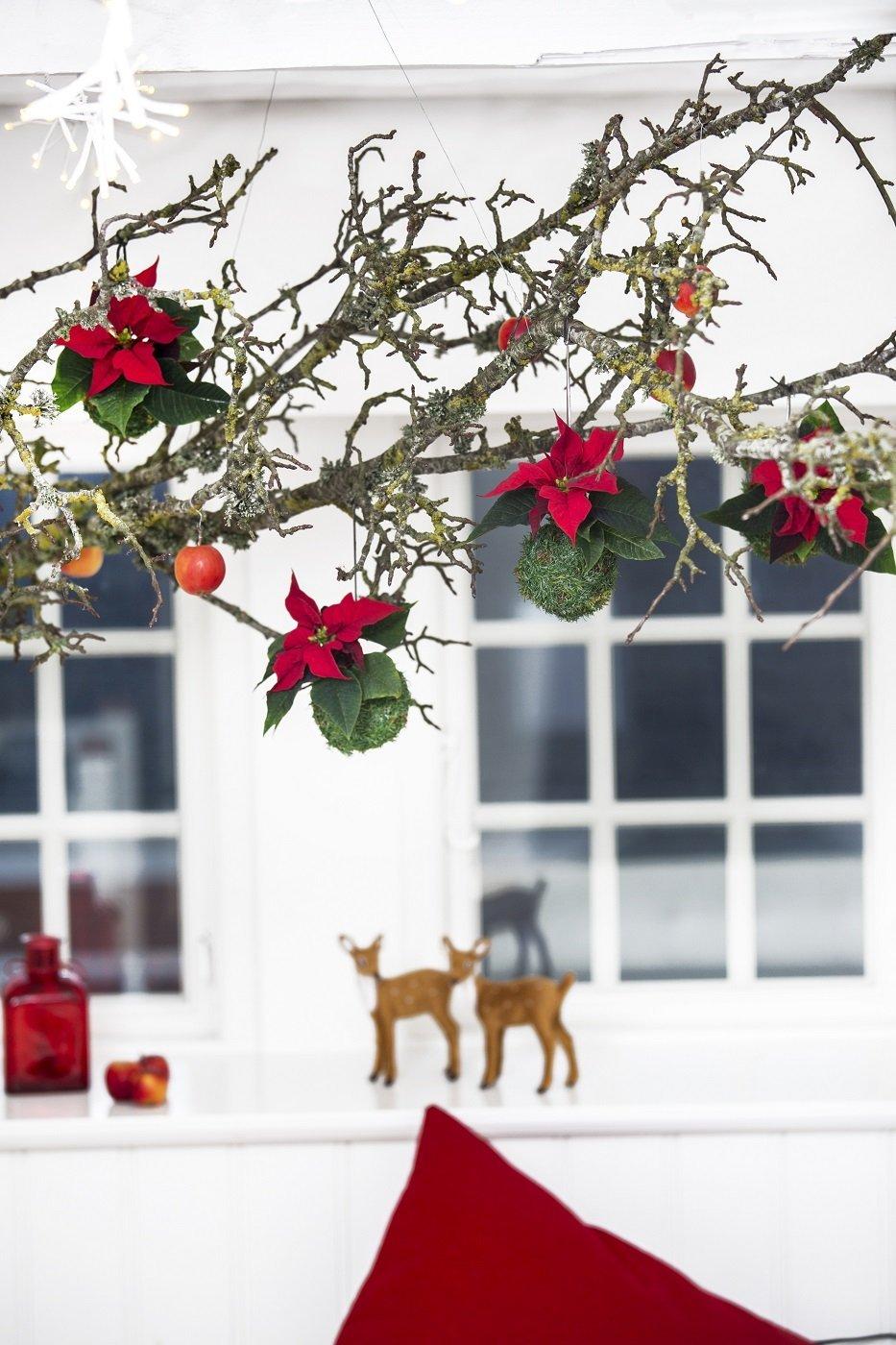 Stella di natale come decorare casa per le feste cose di casa - Decorare finestre per natale ...