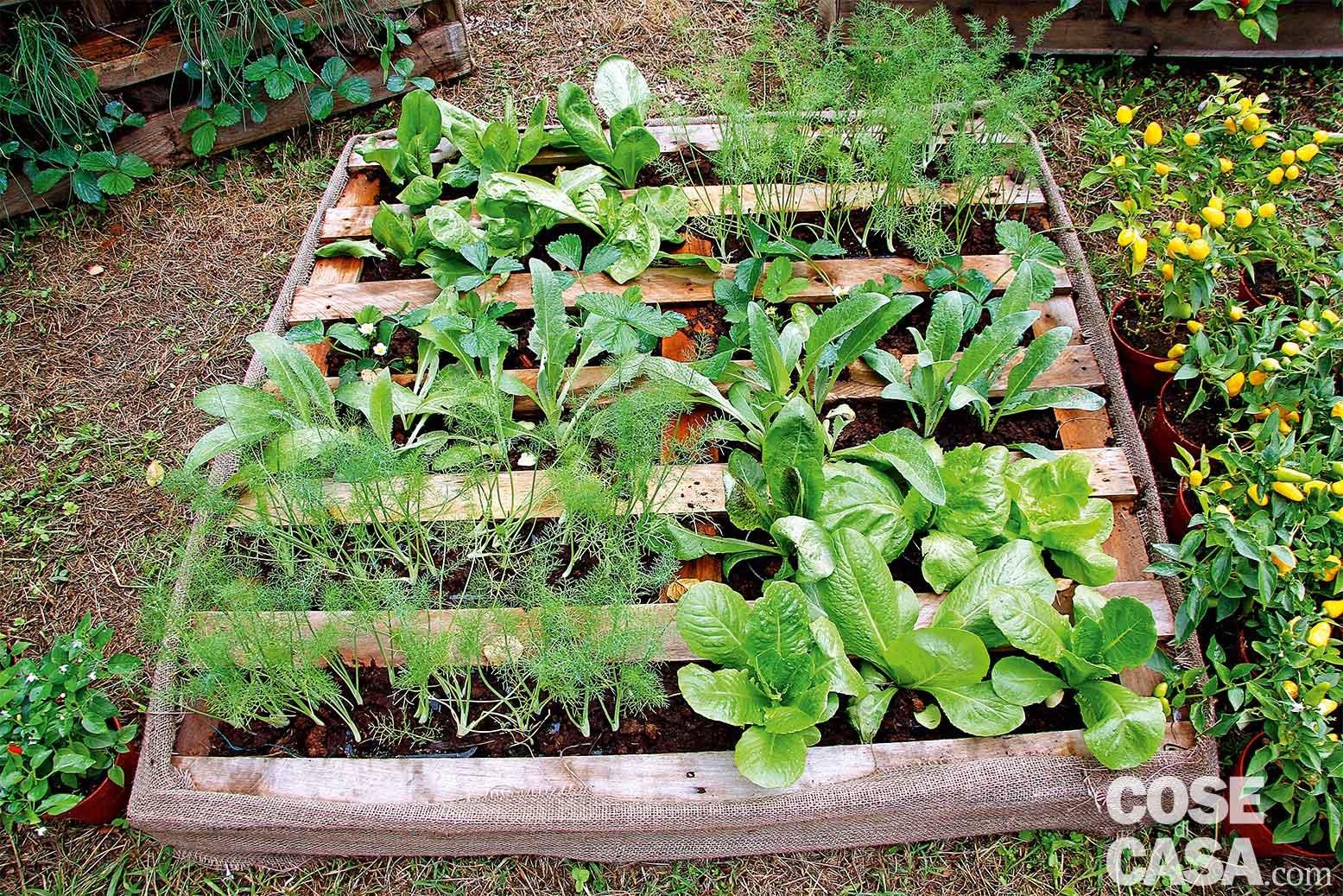 Estremamente Idee da copiare per valorizzare il giardino - Cose di Casa CU81