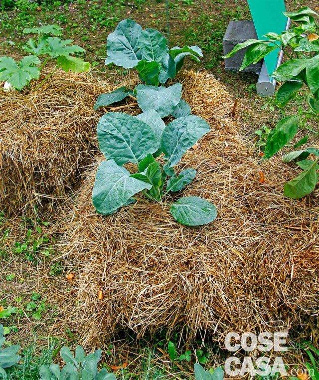 Idee da copiare per valorizzare il giardino cose di casa - Sacchi di terra per giardino ...