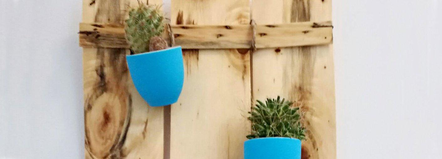 Vasetti per le piantine grasse no tazzine da caff for Tazzine caffe moderne
