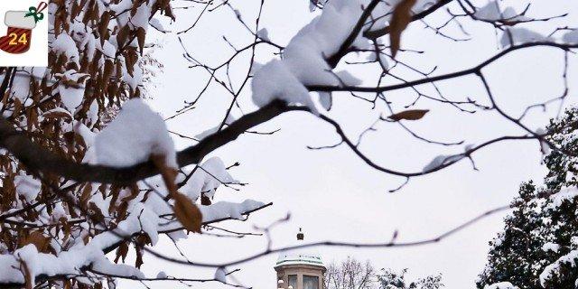 Natale 2016: tutti gli eventi nei parchi più belli d'Italia