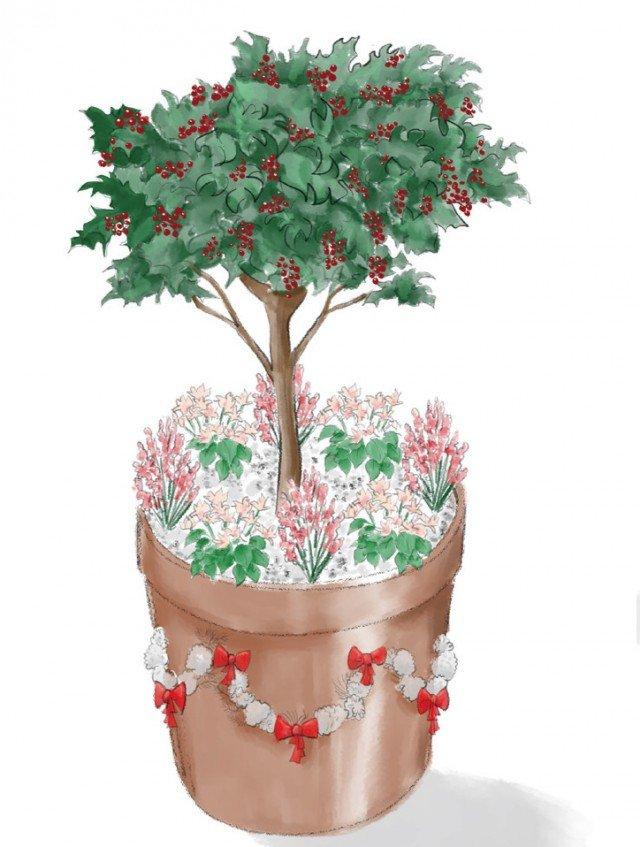 Durante il periodo natalizio, al centro di un grosso vaso in coccio, magari decorato con ghirlande in rilievo, collocate un cespuglio o un alberello ricco di bacche rosse (tra quelli sopra citati) e circondatelo da vasetti di erica, ciclamini o ellebori interrati e mascherati con ciottoli bianchi o cortecce. Brillantini color oro/argento, cosparsi sulle piante, renderanno la composizione più luccicante. I vasetti di piantine fiorite, dopo le feste vanno posti in cassette indipendenti.