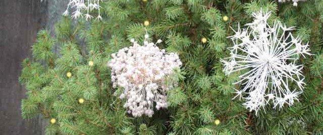 Decorare l'albero di Natale con agli ornamentali