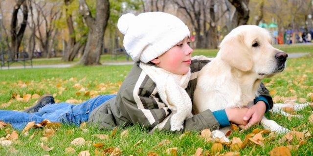 Cane e bambino: i giochi da fare insieme