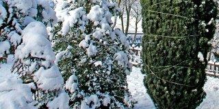protezione dalla neve