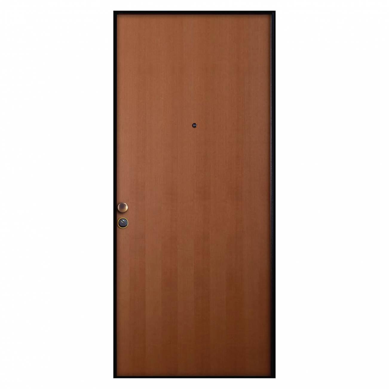 Porta di ingresso guida all 39 acquisto cose di casa - Pannello porta blindata leroy merlin ...