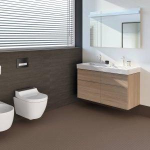 Geberit AquaClean Tuma abbinato al bidet: una coppia perfetta per aggiungere comfort e funzionalità rispetto ai sanitari tradizionali.