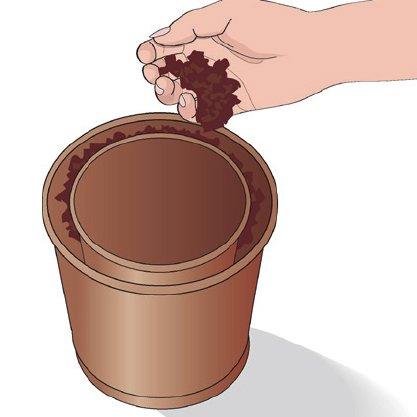 2. Riempire lo spazio vuoto tra i due vasi con del composto specifico per piante grasse, fino a 1 cm dal bordo. Schiacciare bene le pareti del vaso interno per stabilizzare il composto e lasciare una cavità. Poi togliere il vaso interno.