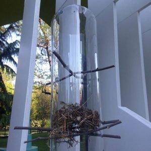 House of Birds: Crystal Palace, design Sebastian Bergne
