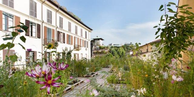L'orto modulare sul tetto di Milano