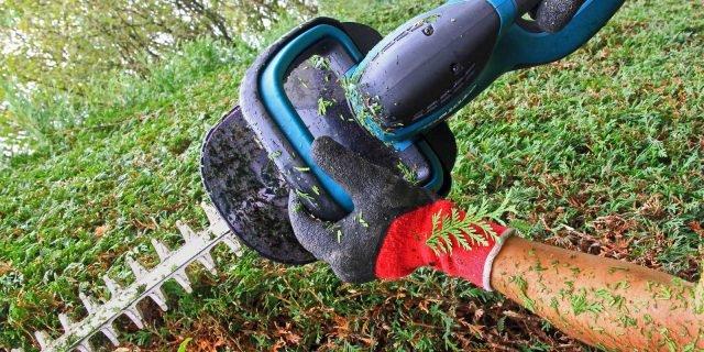 Evitare gli incidenti in giardino