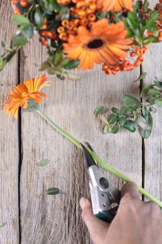 3. Con una lama affilata tagliate in obliquo il gambo delle gerbere per aumentare la superficie di assorbimento dell'acqua. Poi inferrettate la parte di gambo rimasta. Togliete le foglie basali ai rametti di piracanta (per evitare che marciscano).