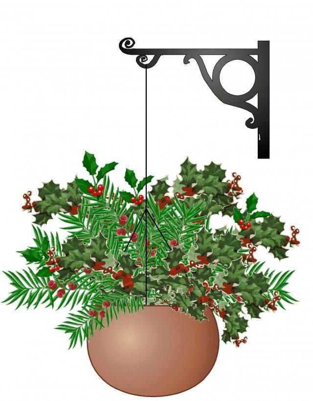 3. Altre piante dall'aspetto festoso anche senza addobbi, sono le produttrici di bacche, come le sempreverdi agrifoglio, nandina e tasso. Queste sono perfette in un cesto appeso, ben agganciato, su un balcone coperto. Foderate il contenitore con un foglio di plastica in modo che non si rovini e poi inserite le piante lasciandole nei piccoli vasetti di acquisto. Nel periodo delle festività andranno annaffiate almeno un paio di volte ma in quantità ridotte.