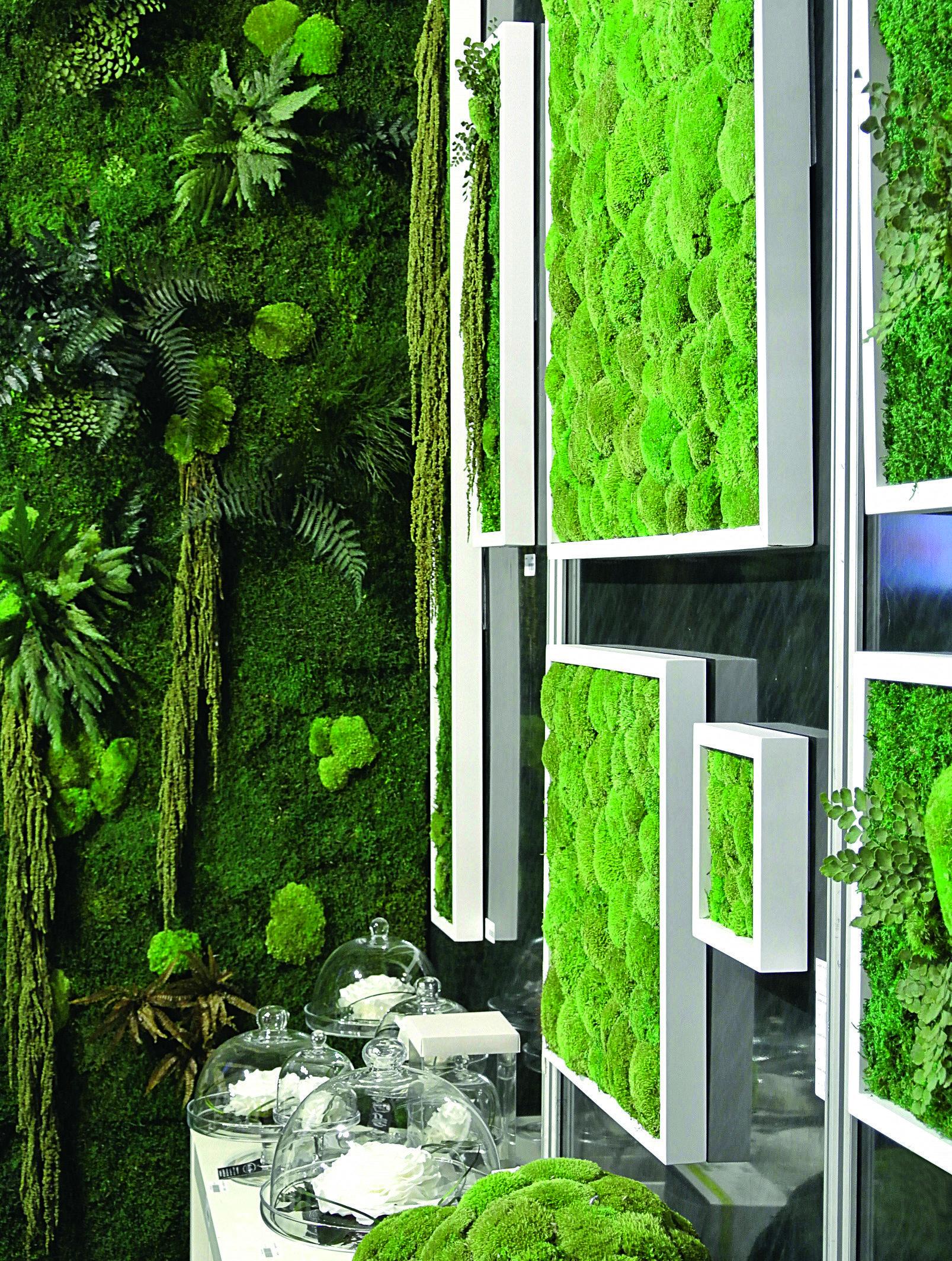 Pareti Verdi Verticali Costi il verde stabilizzato con muschio, licheni e felci - cose di