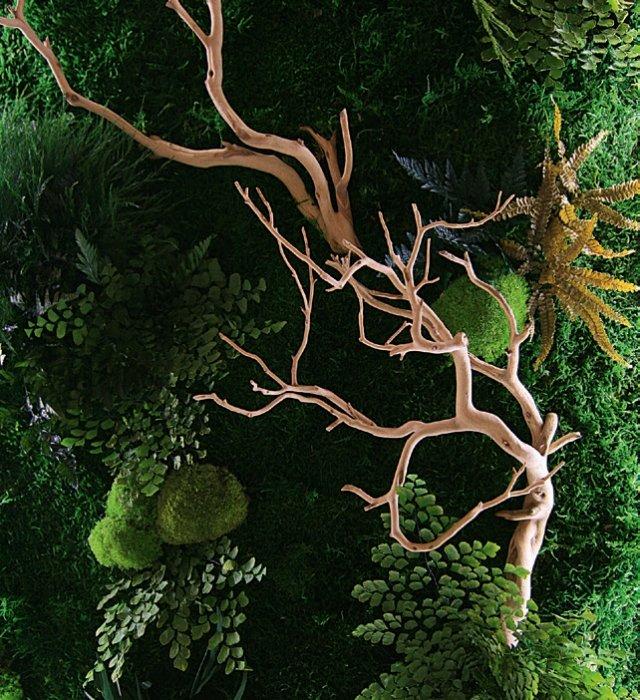 Un quadro ArsNova con lichene, muschi, rami e foglie stabilizzati