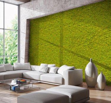 Le pareti di licheni stabilizzati Green Habitat non hanno bisogno di alcuna cura