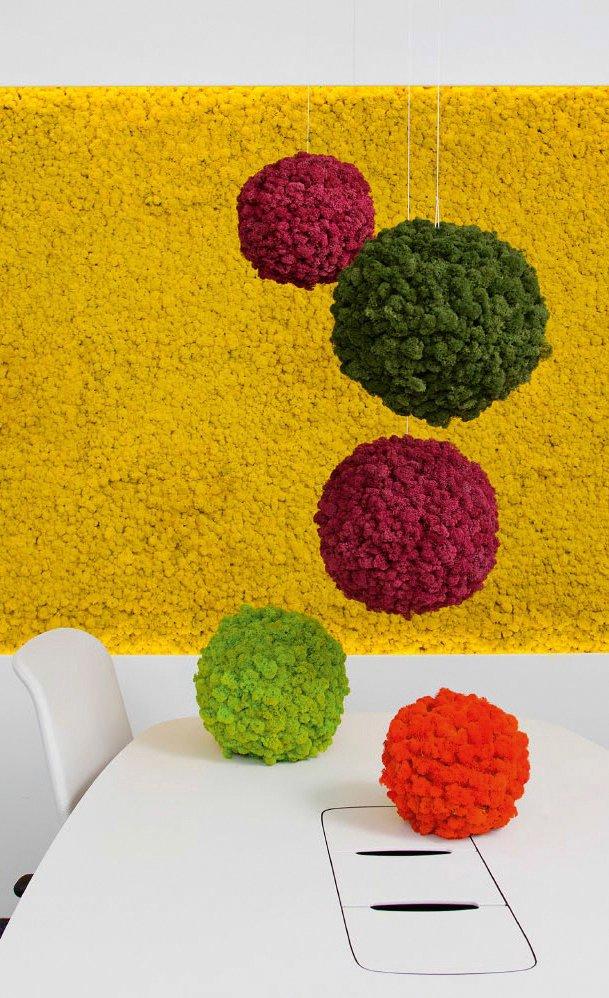 Le Sfere Polarmoss colorate possono essere appese al soffitto oppure appoggiate