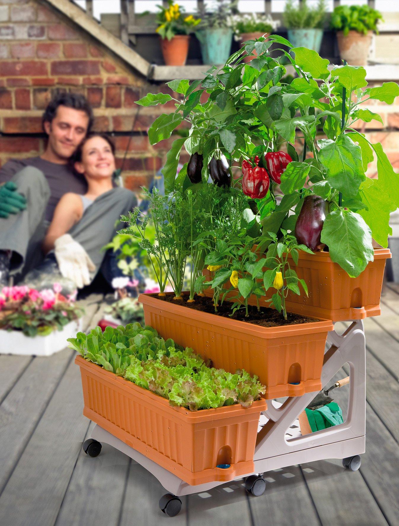 Vasi in verticale: soluzione salvaspazio per l\'orto sul balcone ...