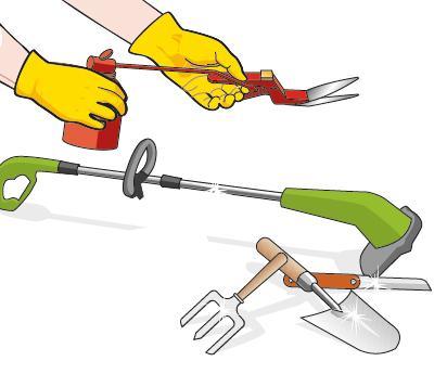 3. Gli attrezzi, se non sono stati ripuliti in autunno, devono essere controllati adesso: bisogna togliere eventuali residui di terra e la ruggine, infine ungere con olio lubrificante le lame e la molla delle forbici.