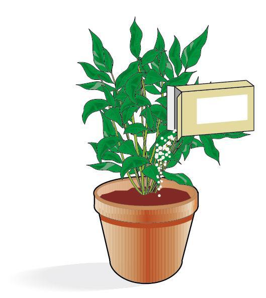 3. Il concime per le piante in formato granulare o microgranulare, deve essere aggiunto nel vaso così com'è (sempre secondo le dosi indicate in etichetta). Prima di usarlo è meglio innaffiare il terreno, quindi aggiungere il concime che, sciogliendosi con l'umidità del terreno, rilascerà gli elementi nutritivi gradualmente. Questi prodotti hanno una durata più prolungata, solitamente di 3 mesi, e sono detti concimi a lenta cessione.