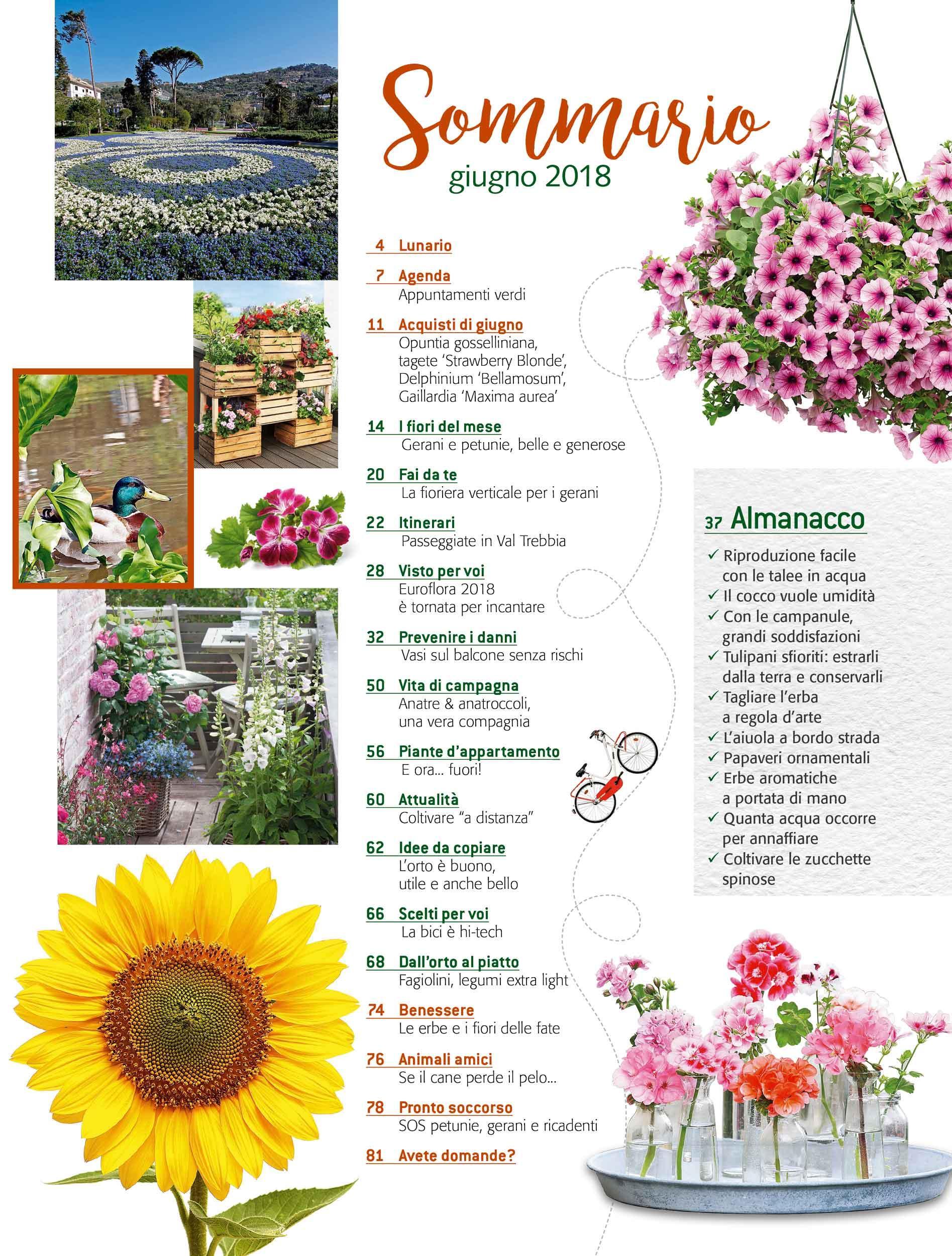 Fiori Del Mese Di Giugno in edicola dal 23 maggio, casa in fiore di giugno 2018