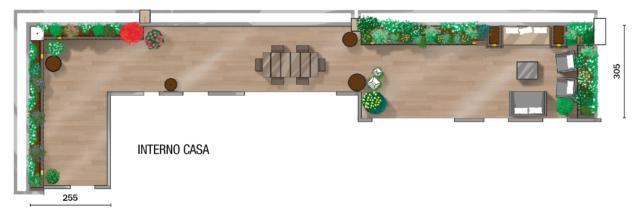 pianta-terrazzo