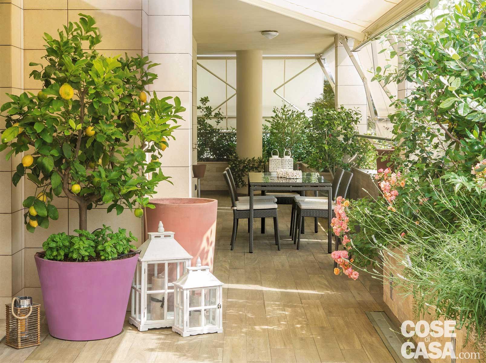 La terrazza diventa living arredare anche con le piante cose di casa - Piante per il terrazzo ...