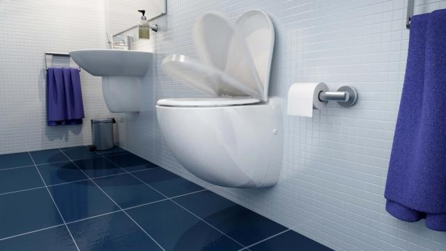 4 sanitrit sanicompactcomfort sanitari sospesi