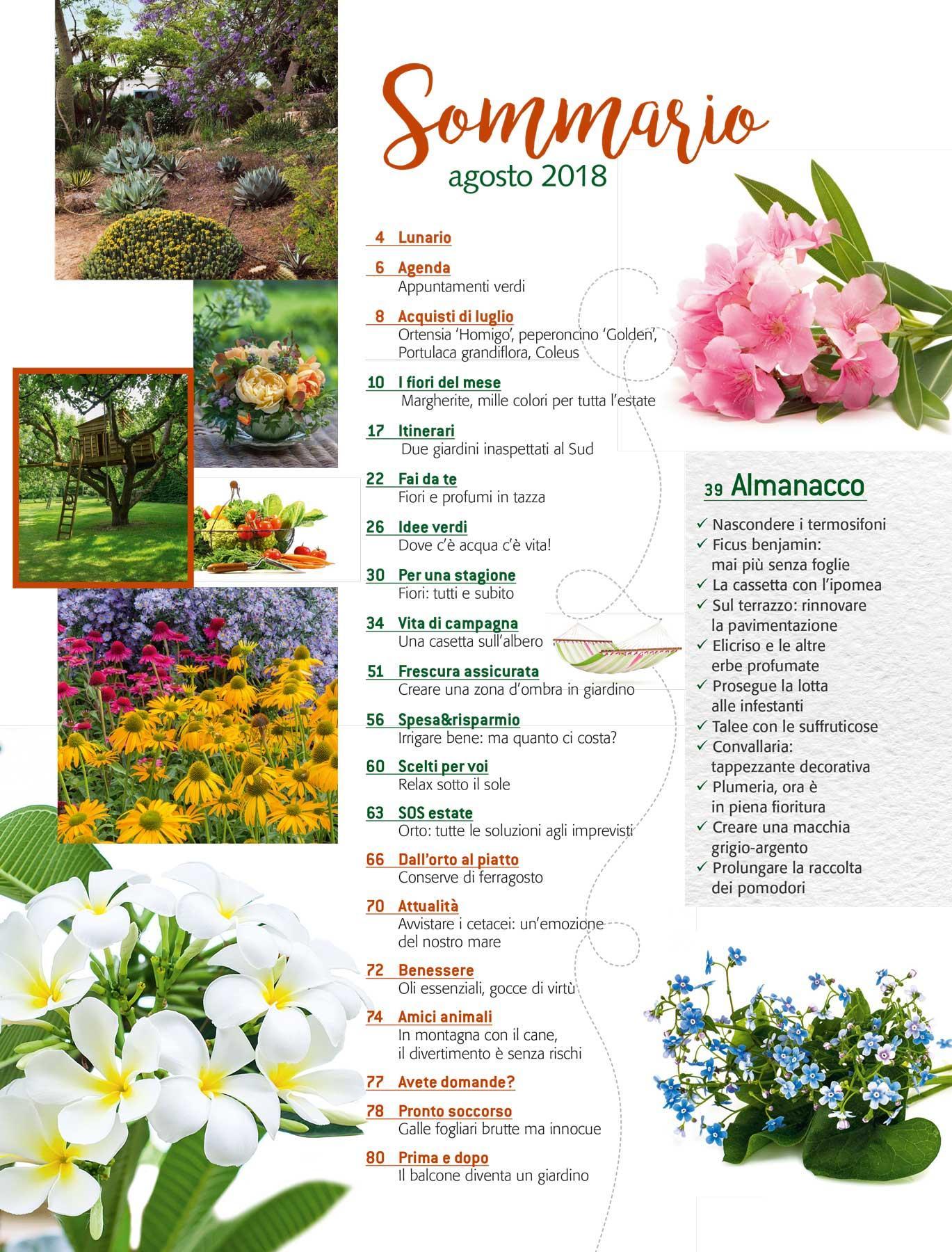 Fiori Da Giardino In Montagna in edicola dal 24 luglio, casa in fiore di agosto 2018