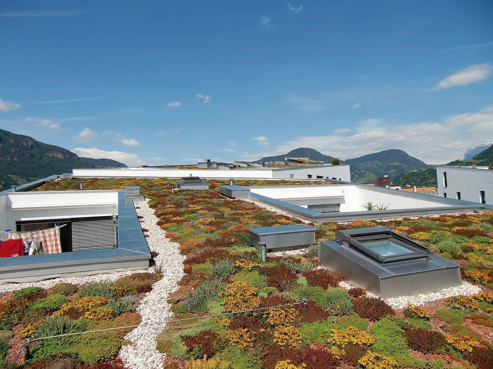Ristrutturare Un Tetto Quanto Costa giardino sul tetto: i vantaggi di avere piante e prato in