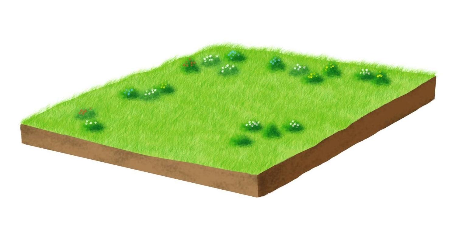 Come Realizzare Un Tetto Economico giardino sul tetto: i vantaggi di avere piante e prato in