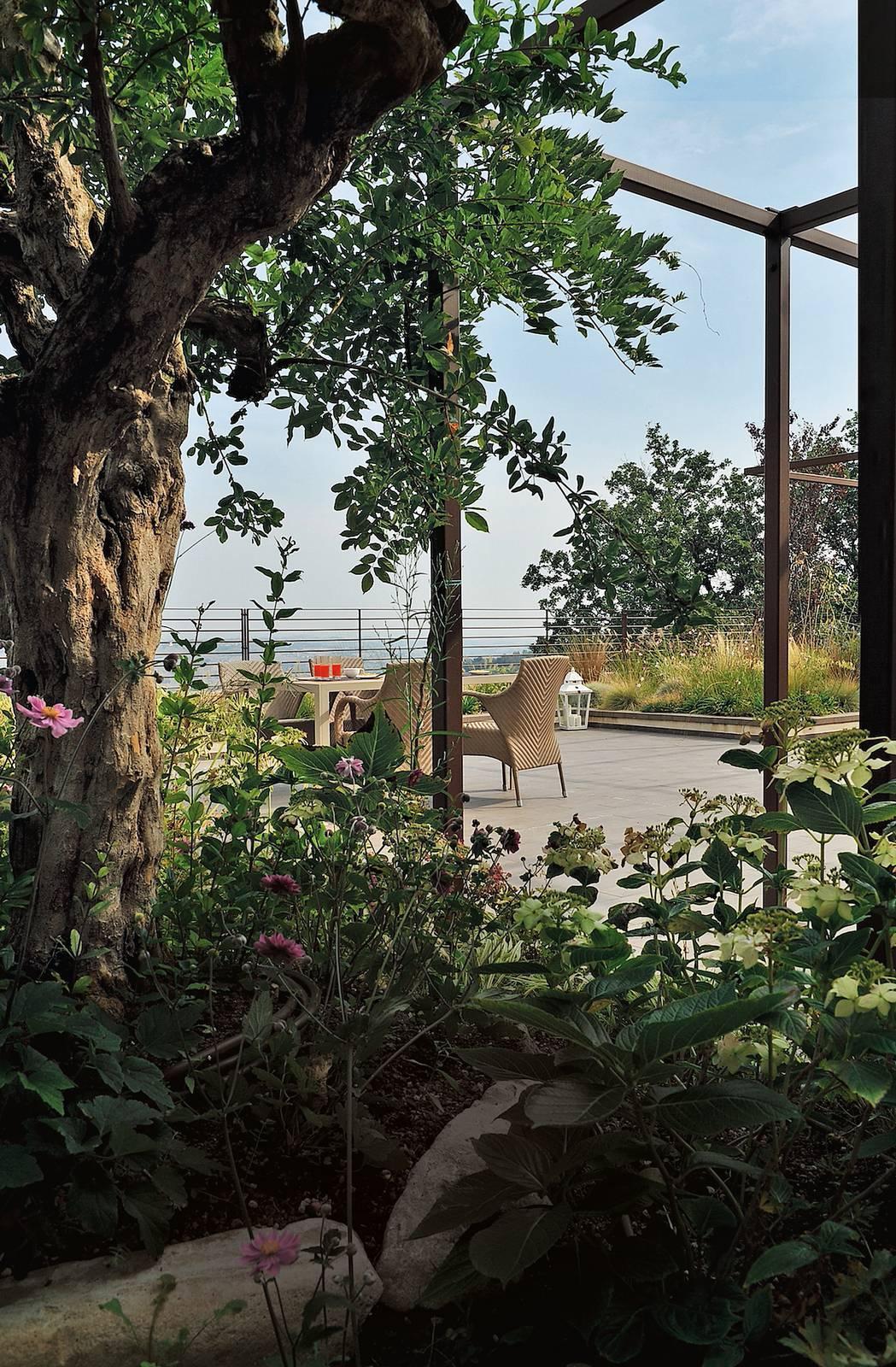 Manutenzione Giardini Milano E Provincia giardino sul tetto: i vantaggi di avere piante e prato in
