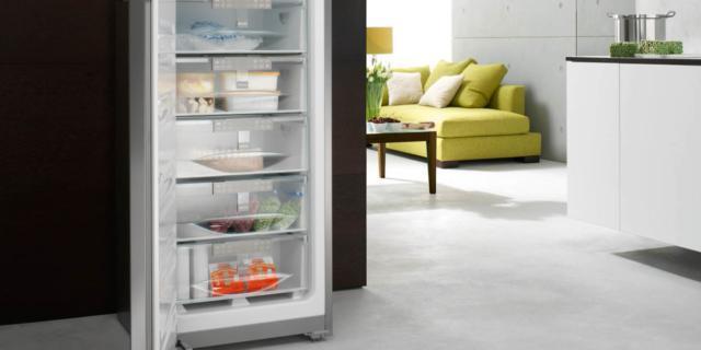Congelatori: meglio verticali o a pozzetto?