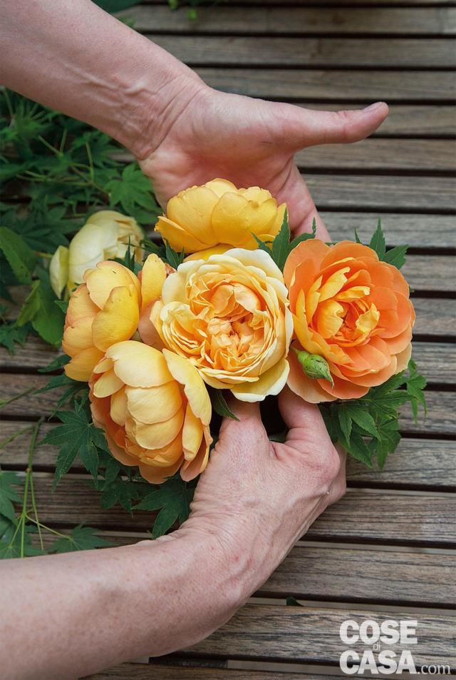 6. Inserire poi le 3 Rosa 'Jude the Obscure', più chiare, in modo da alternare le tonalità dei fiori, cercando di dare alla composizione una forma arrotondata e lasciando sporgere le foglie dell'Acer tra le corolle.