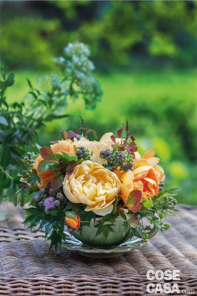 fiori-in-tazza