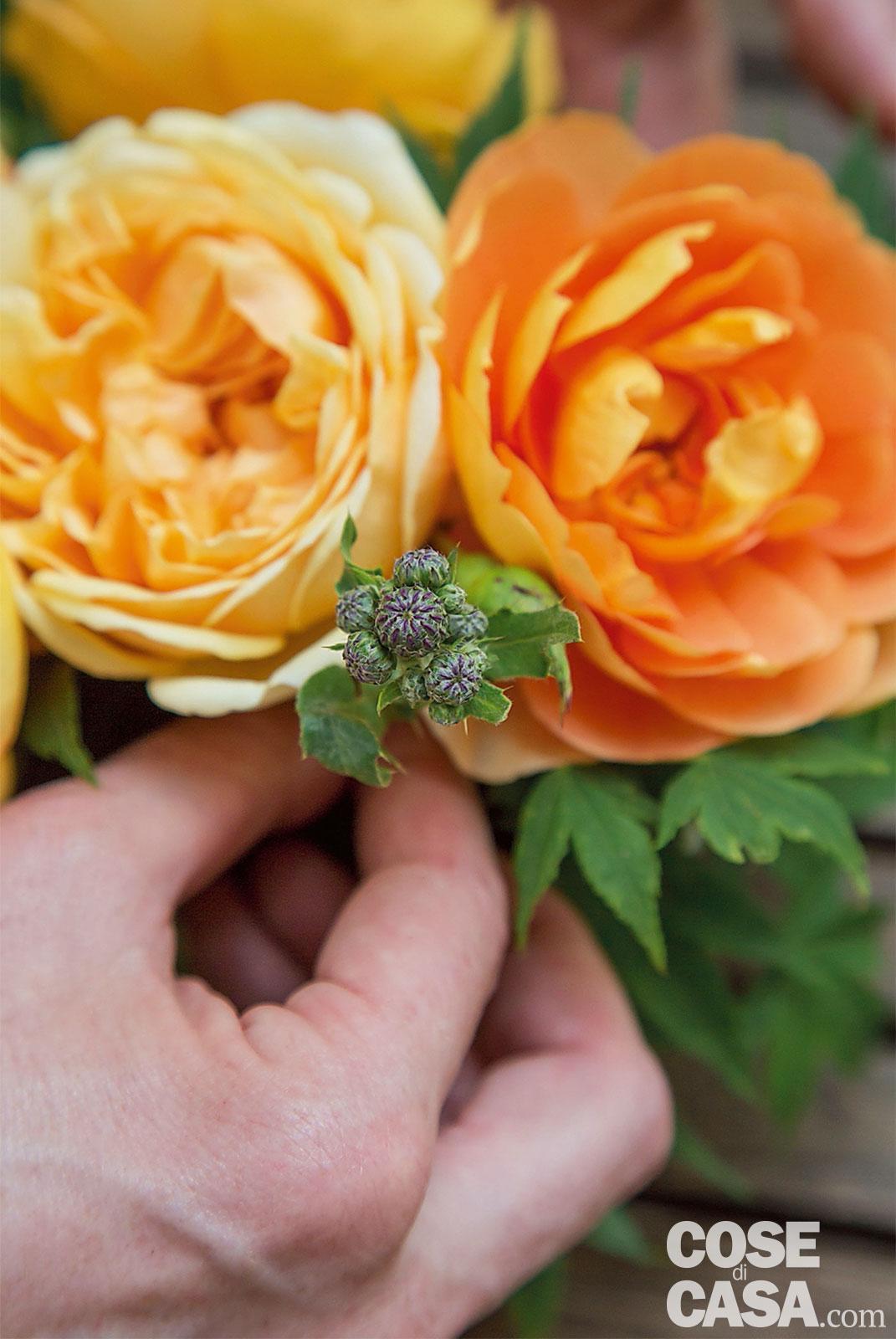 Rose Fai Da Te fiori in tazza: un fai da te con rose, foglie e frutti