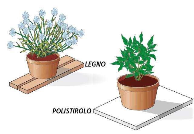 Per proteggere le piante che sono già collocate nei vasi di plastica metallo, occorre isolare il contenitore da terra posizionando sotto la base, qualche assicella di legno o un foglio di polistirolo.