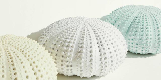Riccio, pouf di resina, Valentina Zuendel. Al Design Supermarket della Rinascente.