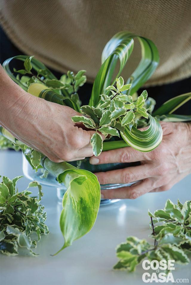 4. Distribuire i rametti di Pittosporum nella spugna per formare una base stabile che faccia risaltare i fiori (se necessario si possono usare i rametti di salal, per fornire una base più scura), lasciando spazio per i fiori e i frutti.