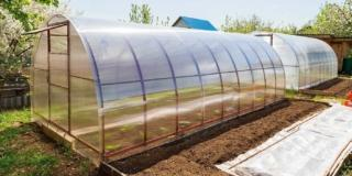 Nell'orto: è utile la serra a tunnel