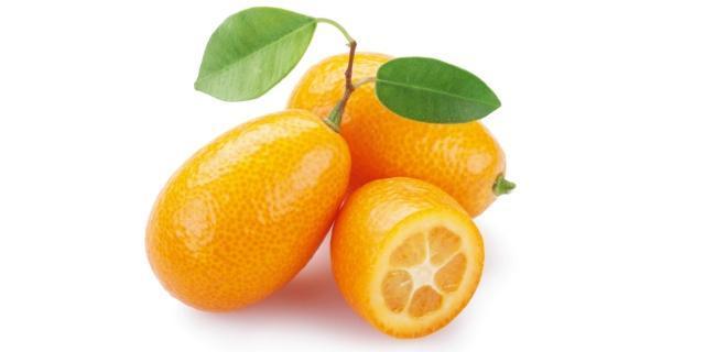 Chinotto, kumquat e limone cedrato: agrumi in vaso