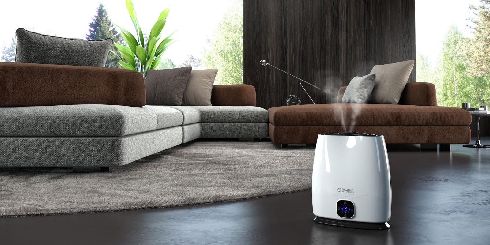 Umidificatori per ambienti in casa al caldo con la - Umidita giusta in casa ...