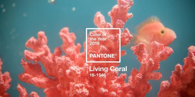 Living Coral il colore Pantone 2019. E la casa si riempie di energia