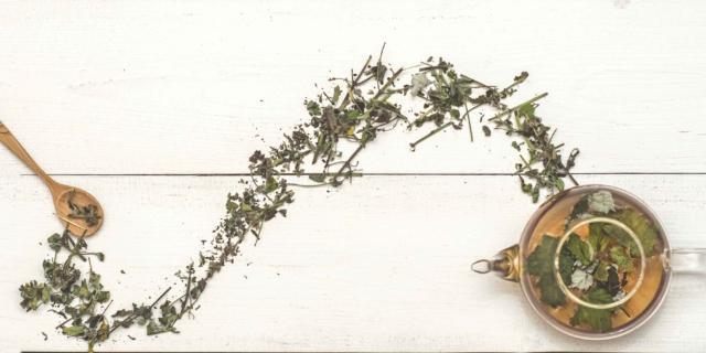 Le erbe per digerire senza problemi