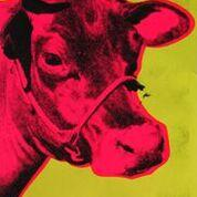 Andy Warhol Superstar