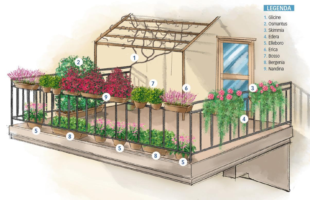 Fiori Da Balcone Ombra il balcone fiorito anche d'inverno - cose di casa