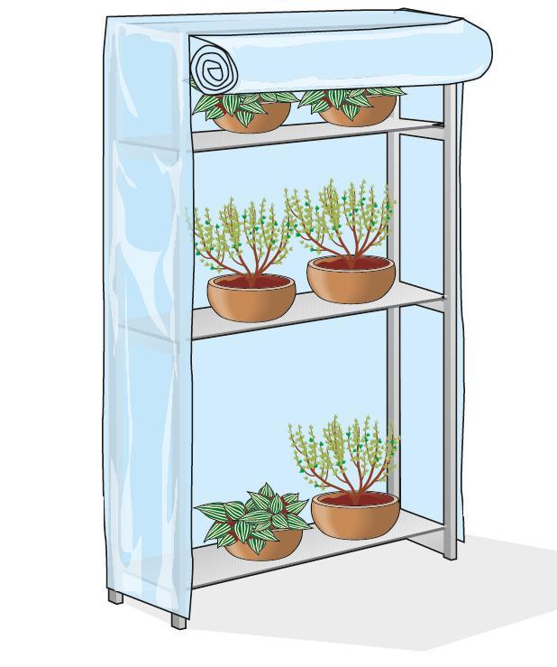 Le protezioni vanno sollevate di tanto in tanto per fare in modo che l'aria circoli all'interno della serra così da consentire una buona ossigenazione della chioma, per favorire la traspirazione della pianta e scongiurare l'attacco di eventuali malattie fungine.